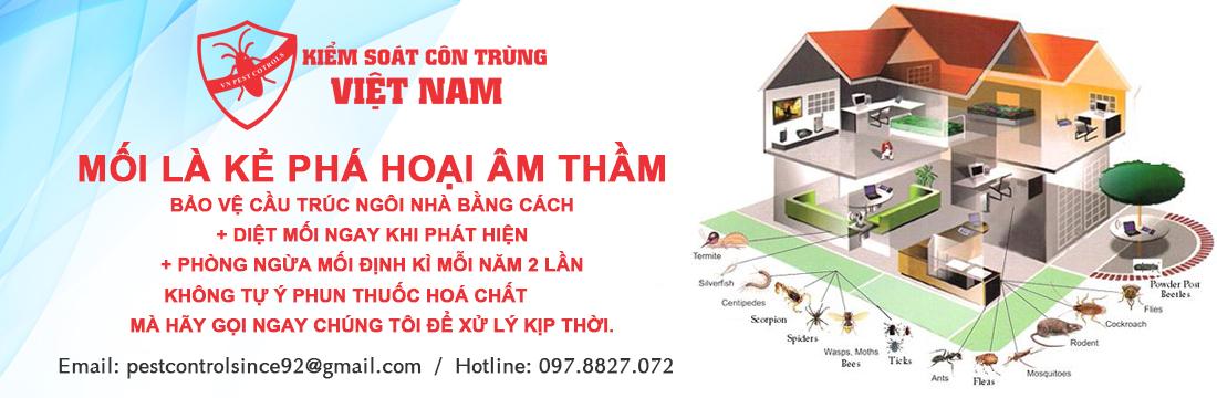 Diệt mối an toàn tại Hà Nội
