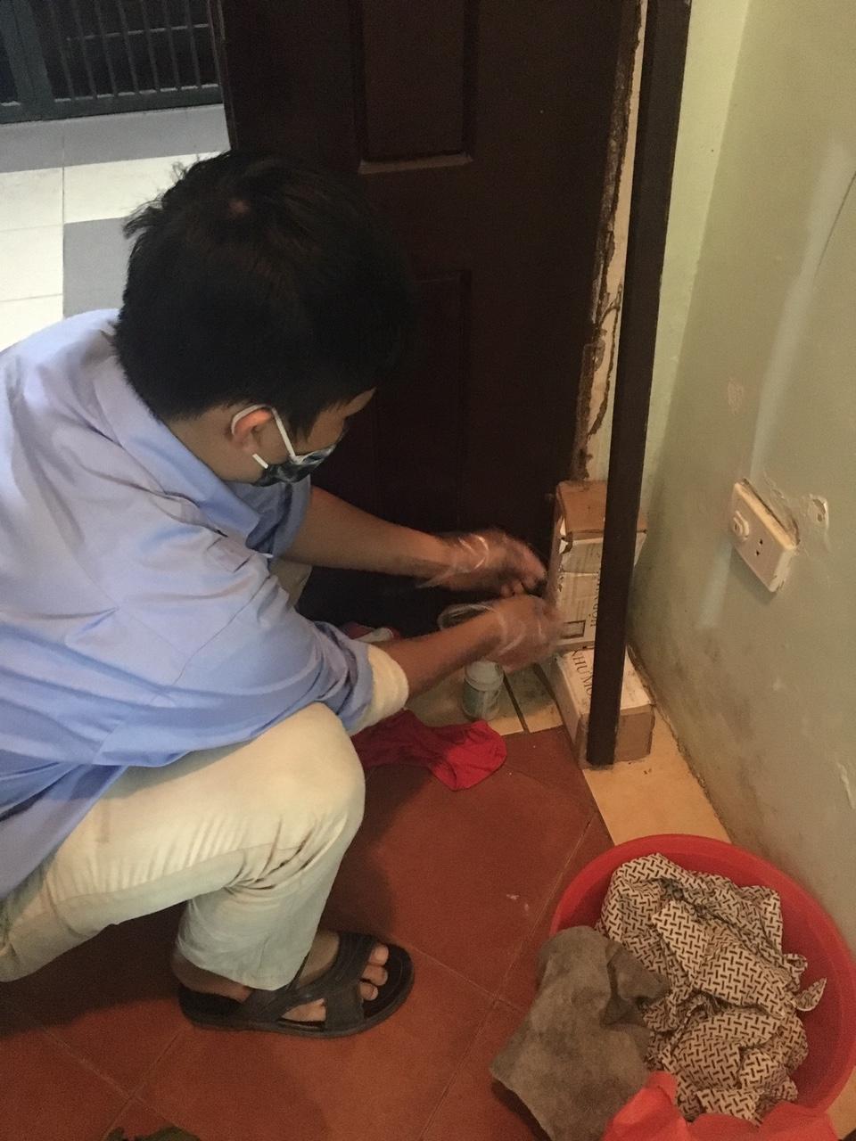 Công ty TNHH Kiểm soát côn trùng Việt Nam - Diệt trừ côn trùng tận gốc