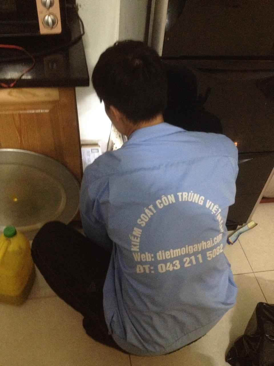 Dịch vụ diệt mối hiệu quả, tiết kiệm tại Long Biên