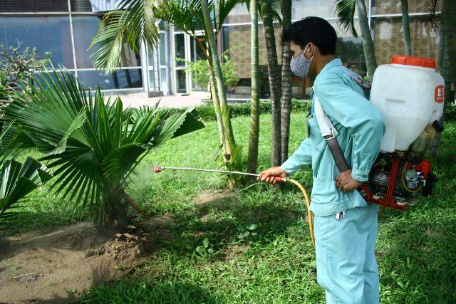 Dịch vụ phun muỗi an toàn tại Gia Lâm