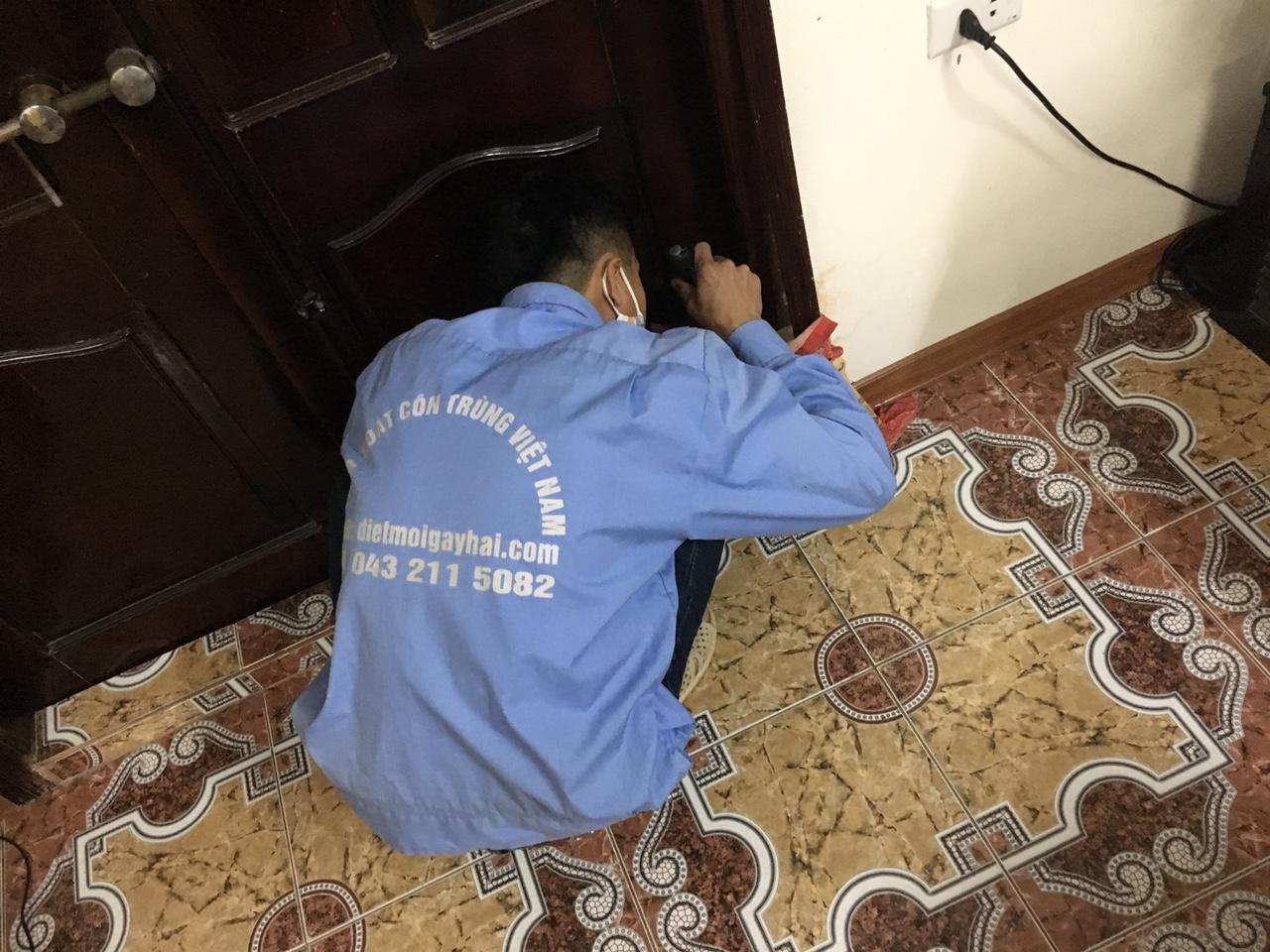 Dịch vụ diệt mối an toàn tại Linh Đàm