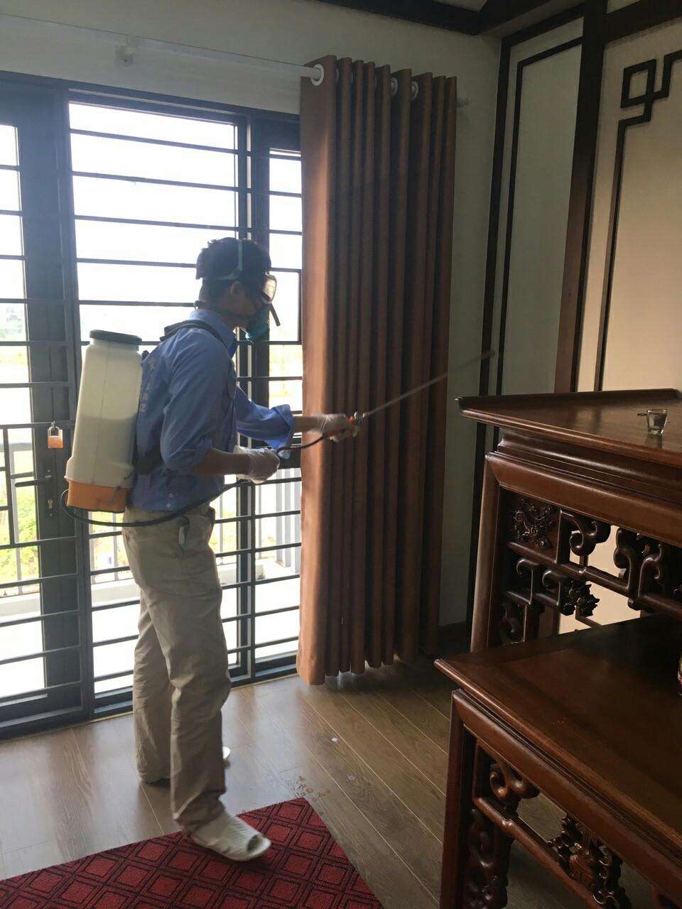 Dịch vụ diệt ruồi an toàn, giá rẻ tại Nhà Hàng, Khách Sạn