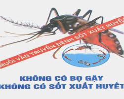 Dịch vụ phun muỗi an toàn tại Quận Long Biên